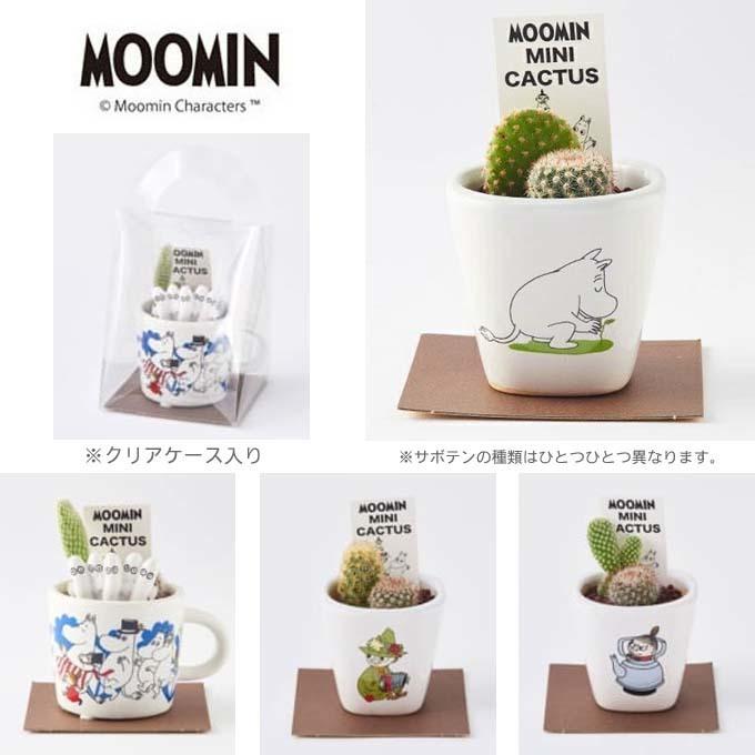 MOOMIN ムーミン ミニカクタス ケース付 ギフト.jpg